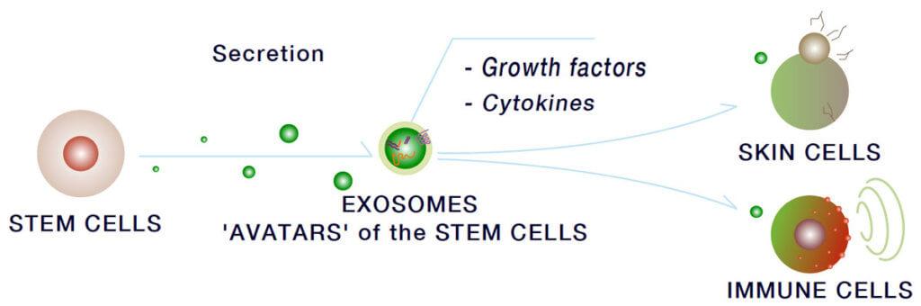 Exosomes - Irvine, Orange County, CA - Precision Aesthetics